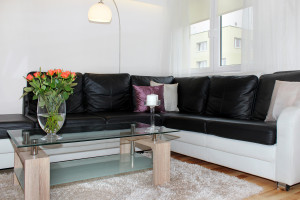 apartamenty (9)